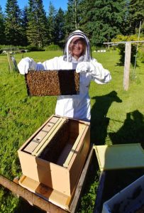 Beekeeping at Nettles Farm on Lummi Island